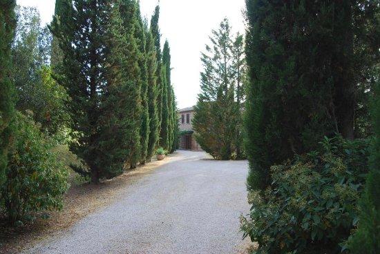 Podere Fiorello: Entrance
