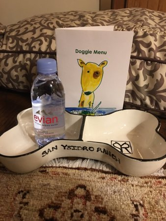 San Ysidro Ranch, a Ty Warner Property: Welcome from the hotel for the dogs.