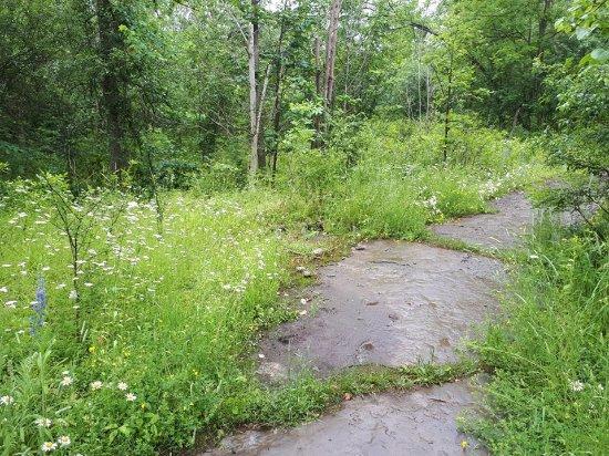 Bath, Canada: Part of trail 5