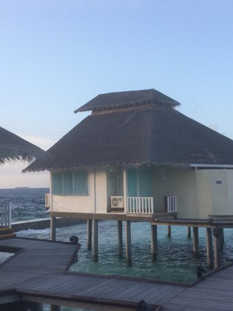Ellaidhoo Maldives by Cinnamon: Absolutely beautiful island