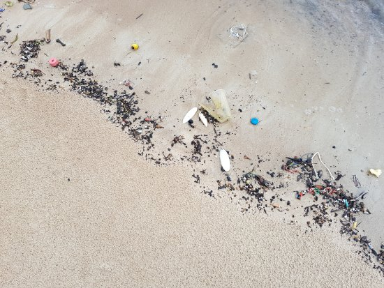 Wind Beach Resort: Horrible beach