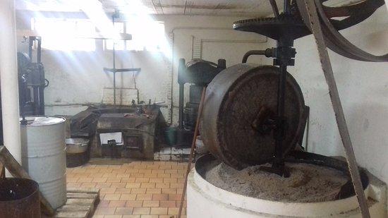 Fabrieksrondleidingen