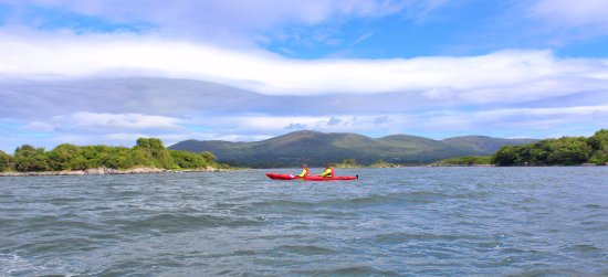 Explore the stunning scenery of Kenmare bay by day and the magic of bioluminescence by night.