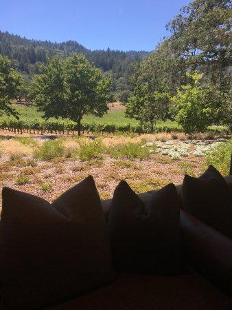 Trinchero Napa Valley: photo1.jpg