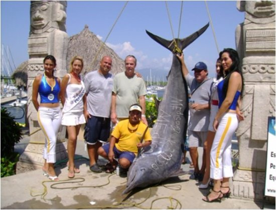 La Cruz de Huanacaxtle, México: The best tournaments in the bay....