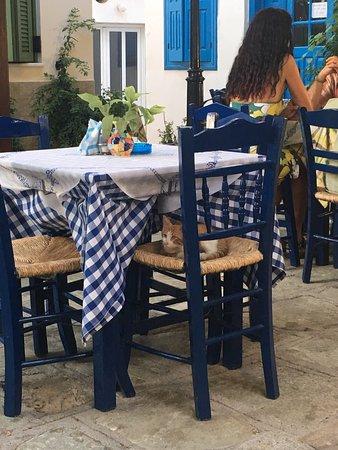Blue Chairs: photo1.jpg