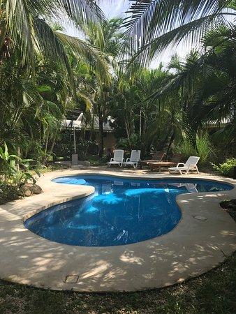 Playa Grande, Costa Rica: Bello hotel y villas , lo recomiendo sin reservas !!