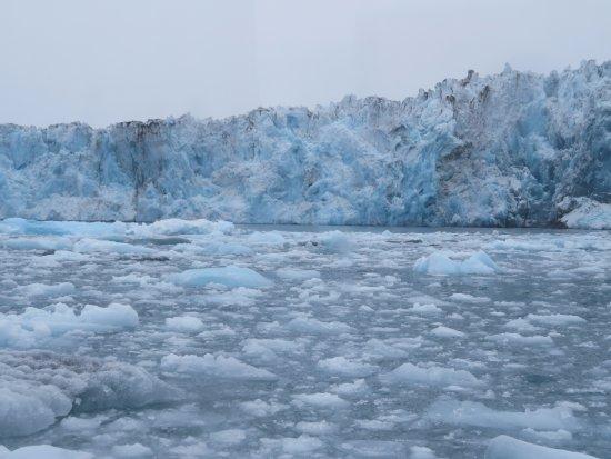 Columbia Glacier: Coming up to Columbia galcier.