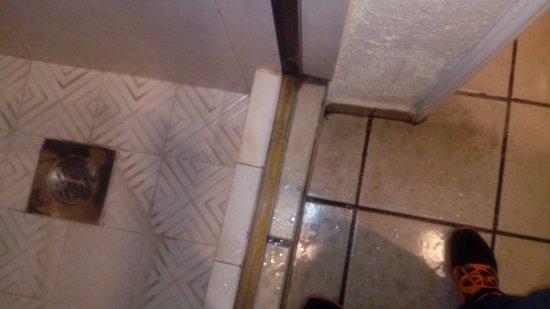 Hotel Posada Virreyes: Con un poquito de àcido muriàtico diluido quedan limpios estos mosaicos
