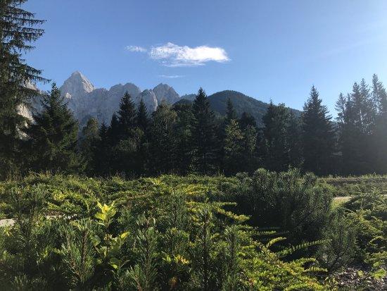 Hotel Spik Alpine Wellness Resort: photo0.jpg