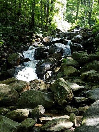 Dawsonville, GA: View along the trail