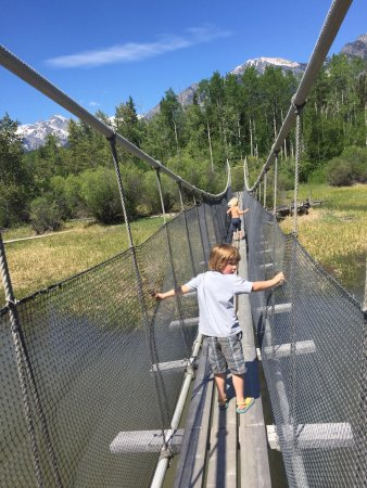 Golden, Kanada: Explore the Wetlands and cross the suspension bridge for lunch!