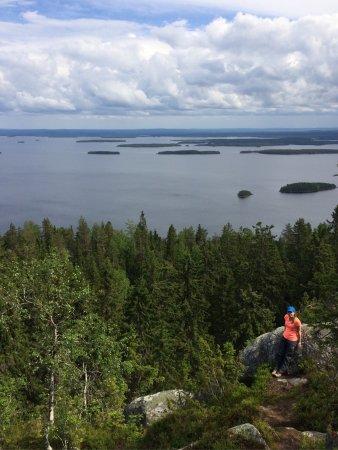 Koli, Suomi: photo4.jpg
