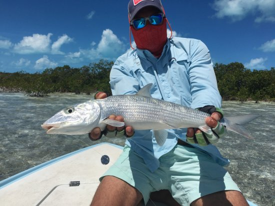 Swain's Cay Lodge: another bonefish