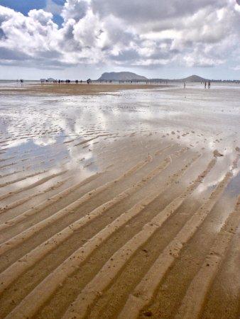 Kaneohe, HI: Sandbars