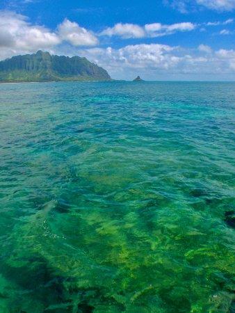 Kaneohe Bay looking towards Chinaman's Hat