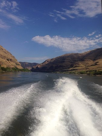 Clarkston, Waszyngton: Had a blast with Captain Bill and deckhand Steve on our trip. Loved the high water