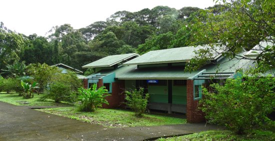 La Selva Biological Station Updated 2021 Prices Campground Reviews Costa Rica Sarapiqui Tripadvisor