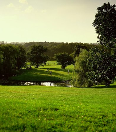 Shedfield, UK: Grounds