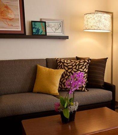 Redmond, WA: Suite Living Area