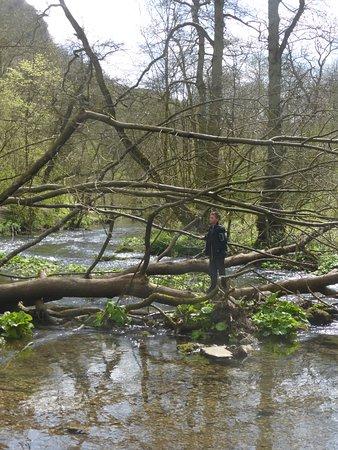 Derbyshire, UK: dove dale with the grandcon