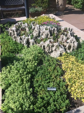 Linnaeus Teaching Gardens (Tulsa) - 2018 All You Need to Know Before ...
