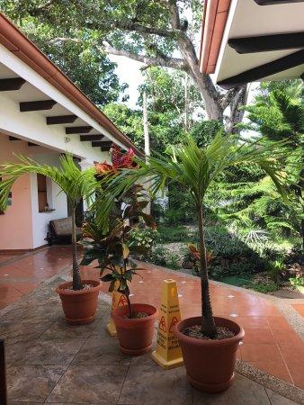 Playa Grande, Costa Rica: Las instalaciones!!