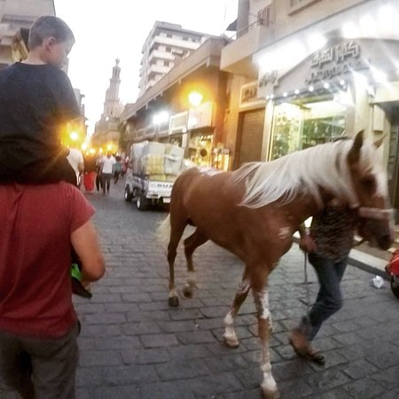 Egypt Fun Tours Day Trips : In the old city!