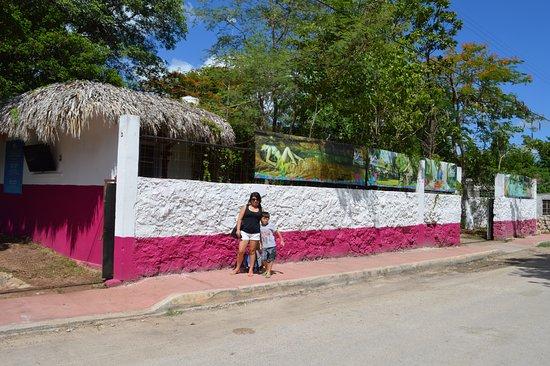 Cenote San Ignacio : san antonio mulix