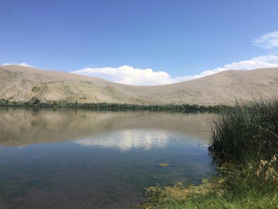 Bruneau, Idaho: photo2.jpg