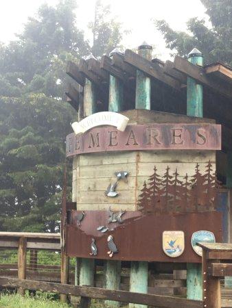 Tillamook, Όρεγκον: Park signs