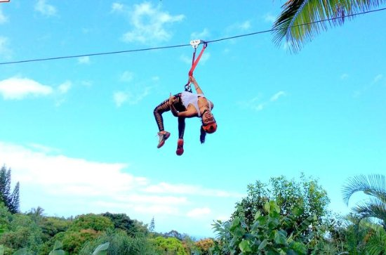 4-Line Jungle Zipline Tour on Maui