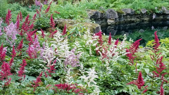 Saratoga Springs, NY: Yaddo gardens & fountains