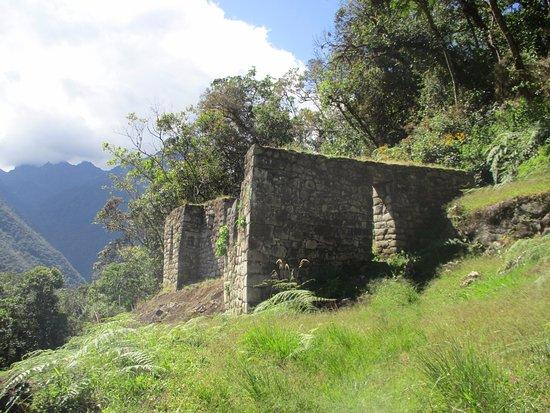 Moon Temple: Antes de la cueva chiquita