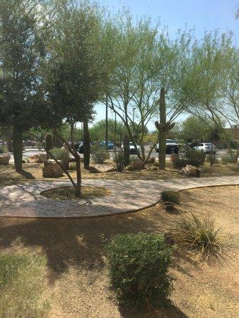 Hilton Garden Inn Tucson Airport : photo0.jpg