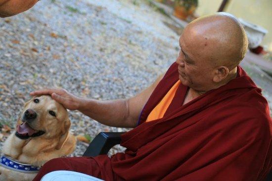 Pomaia, Italia: Visita all'Istituto Lama Tzong Khapa