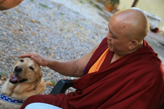 Pomaia, Italy: Visita all'Istituto Lama Tzong Khapa