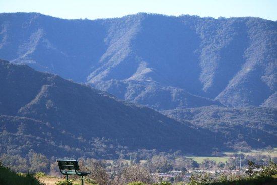 Ojai, كاليفورنيا: Before breakfast hike: around the corner and up the street to Shelf Road