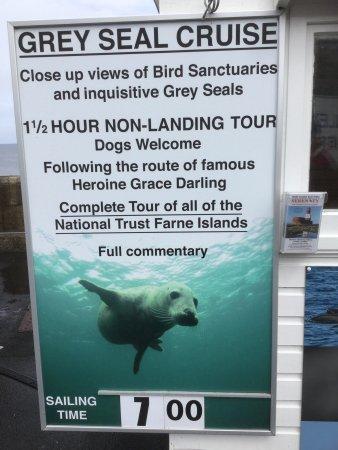 Графство Нортумберленд, UK: A bird trip