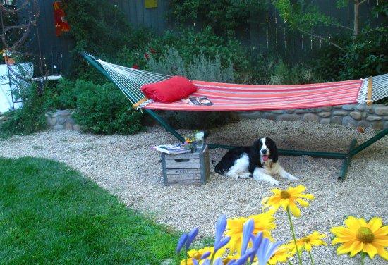 โอจาอิ, แคลิฟอร์เนีย: 2 pet friendly rooms; the Topa and the Provence Cottage.