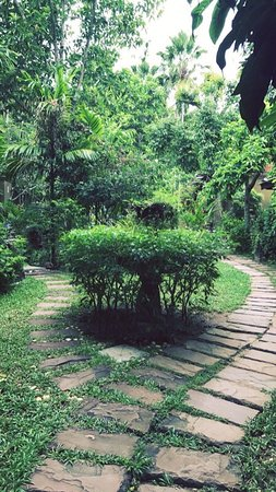 Peace Tropical Spa: photo0.jpg