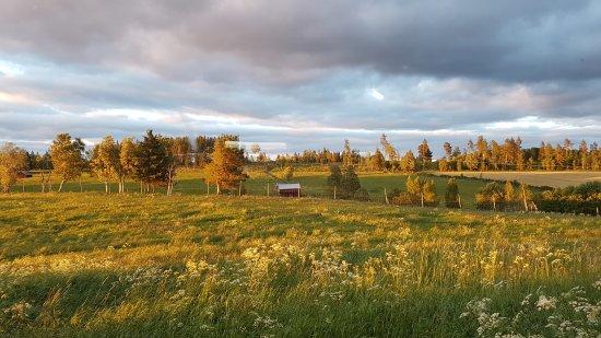 Orrviken, Sweden: 20170705_222321_large.jpg