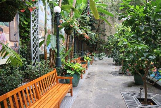 united states botanic garden interno - Botanical Garden Washington Dc