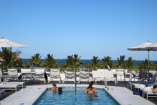 The Hotel of South Beach: Roof Top Pool