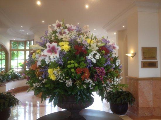 Bilde fra Hotel The Cliff Bay