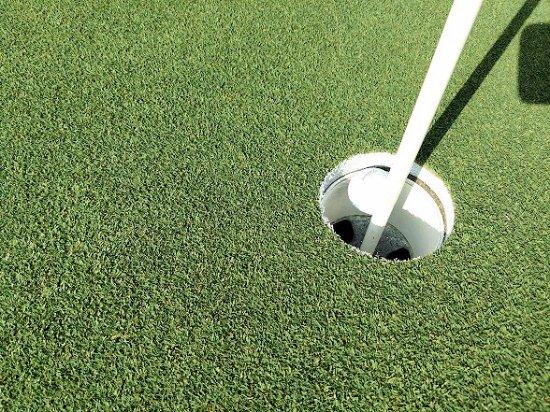 Mebane, Carolina del Norte: 8th green hole-in-one