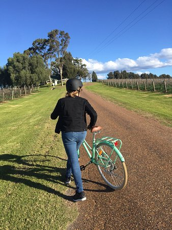Grapemobile Bicycle Hire & Tours: photo2.jpg