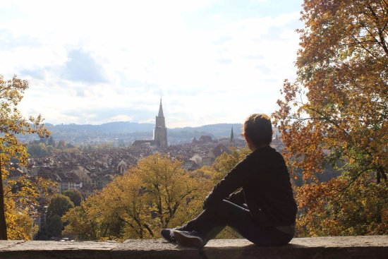 Bern Backpackers - Hotel Glocke : Overlooking the city from Rose garden