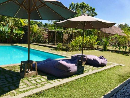 Blue Garden Yogyakarta (Bantul, Indonesia) - Review Guest ...