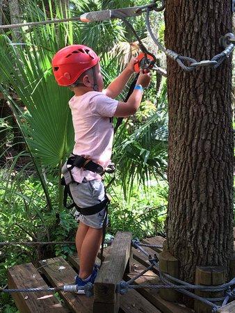 Treetop Trek: received_10154532469611631_large.jpg